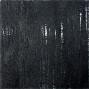 Karin Pietschmann, Wald, 2016, Kaltnadelradierung, 35 x 35 cm