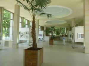 Aufbau der Ausstellung